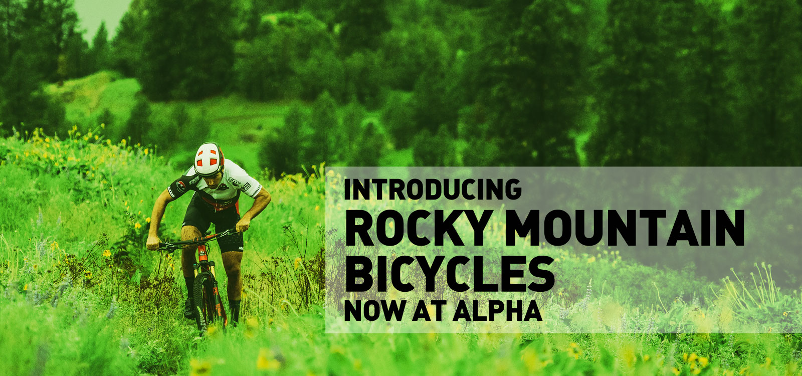 Rocky Mountain Bikes now at Alpha Bicycle Company