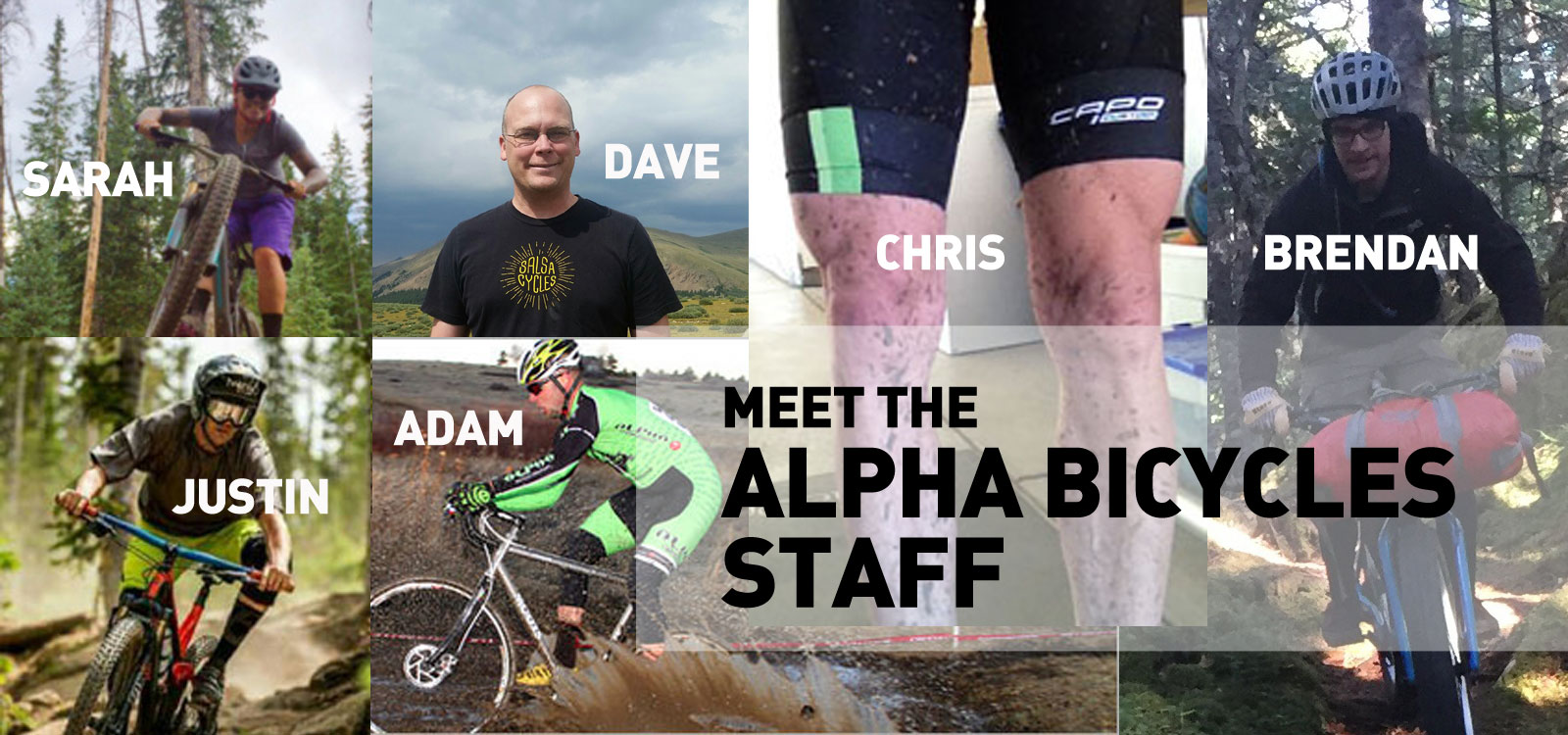 the staff at alpha bicycle company